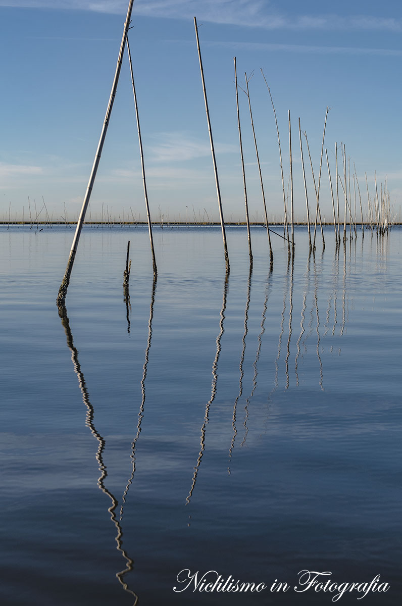 If you think the world is your oyster...: Oyster bed protection, Port Sulpher, Southeast Louisiana
