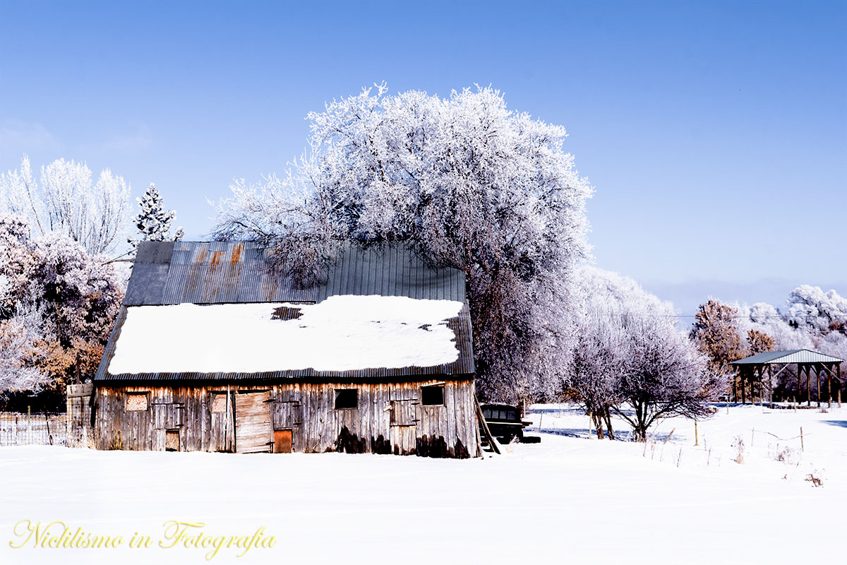 Barn with snow on ground and frost in trees